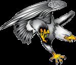 mean eagle